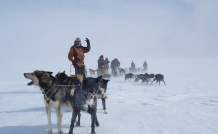 Round trip in Sami land by dog team – 8 days