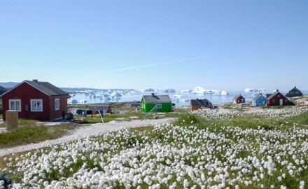 NEW: Greenland – tailor made adventures