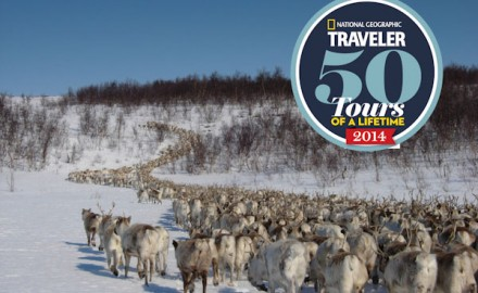 Sámi reindeer spring migration – Tour of a lifetime. 8 days